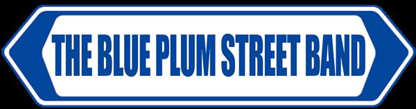 The Blue Plum Street Band